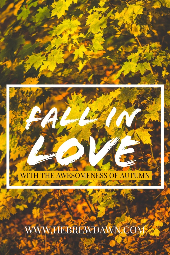 HebrewDawn: the awesomeness of autumn